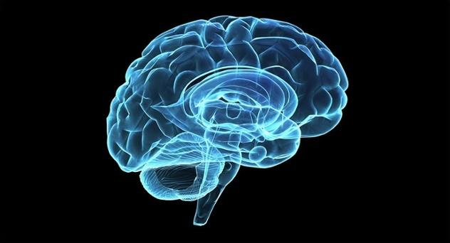 Fem insikter som kan hjälpa dig att bli snällare mot din hjärna