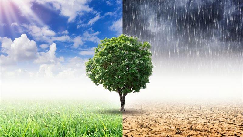 Media Genier igång – Barnens uppdrag: lösa klimatutmaningen