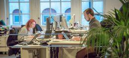 4 eftertraktade yrkesroller inom IT 9