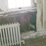 Feature Toxic mold in haunted lighthouse 2