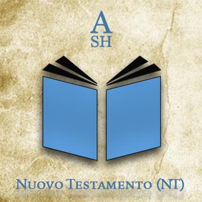 ASH NT ita
