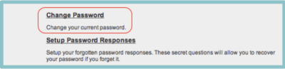 Change Password Tool Circled in Red with Blue Background