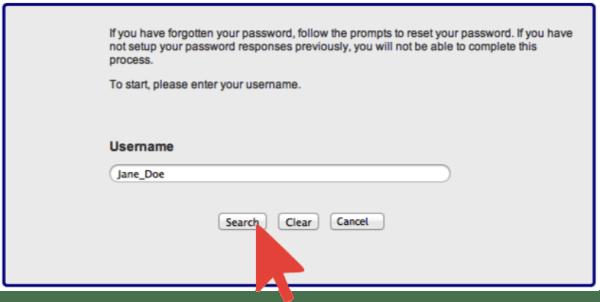 Forgot Password Username Entered Jane_Doe