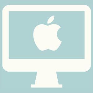 Apple Computer Icon