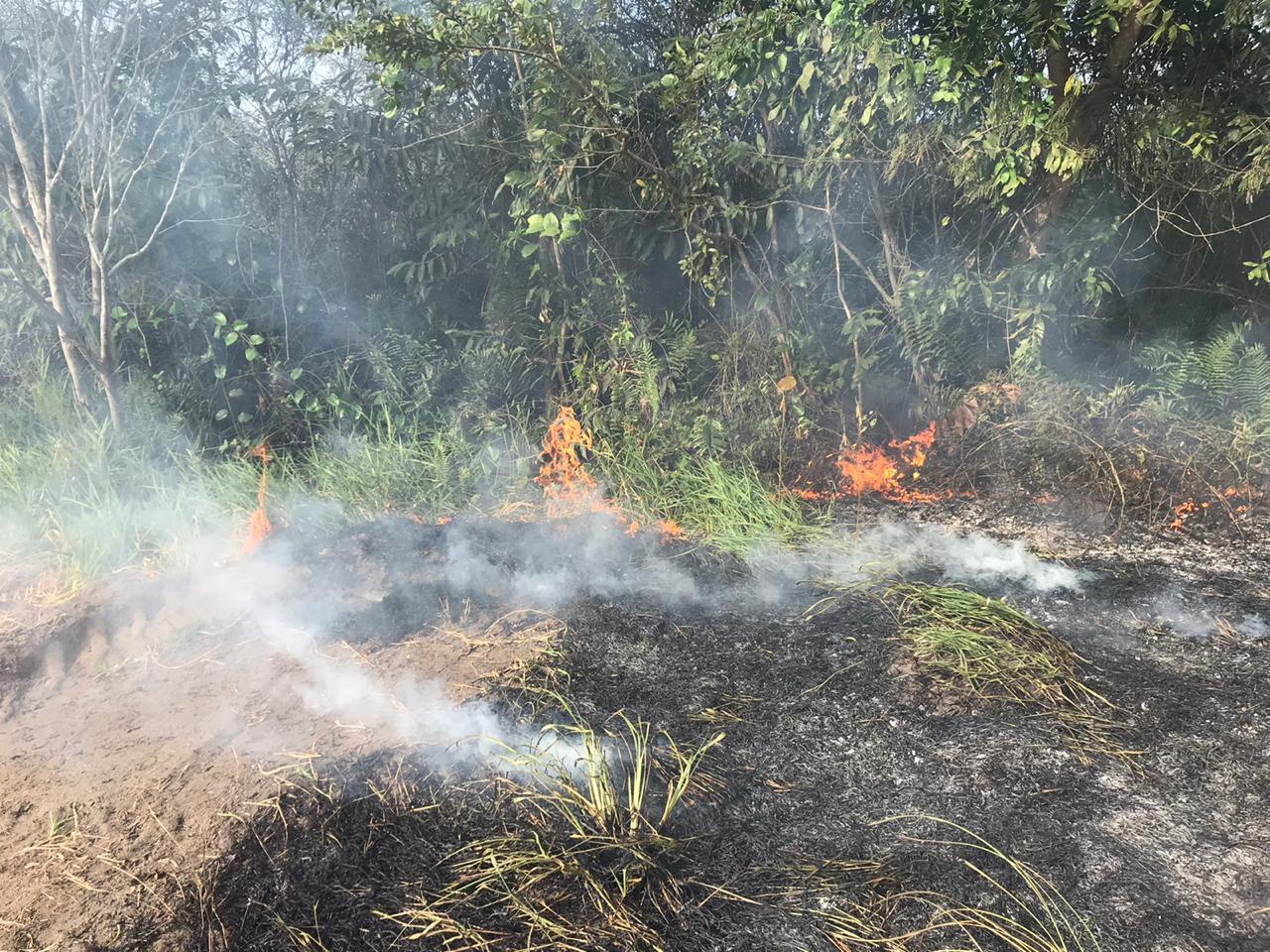Campanha em SFI para alertar sobre os riscos das queimadas