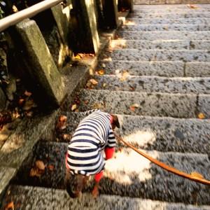階段を駆け下りる!