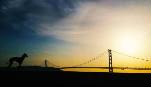 明石海峡大橋と僕。