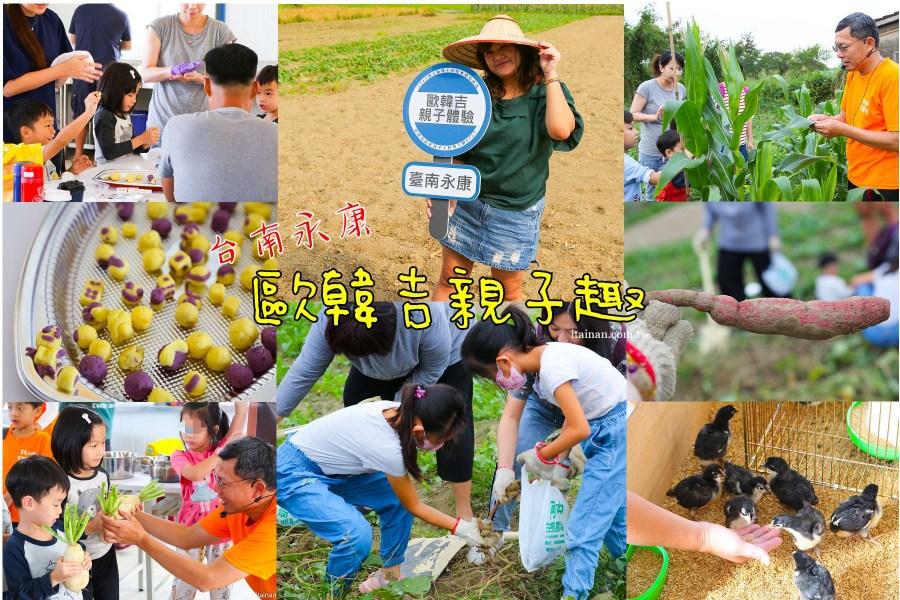 台南親子旅遊|帶孩子來一起來挖地瓜、採玉米筍、餵小雞、地瓜球地瓜圓DIY!!2020國產雜糧十大經典體驗路線-永康「歐韓吉親子趣」|工程師阿中的農夫夢