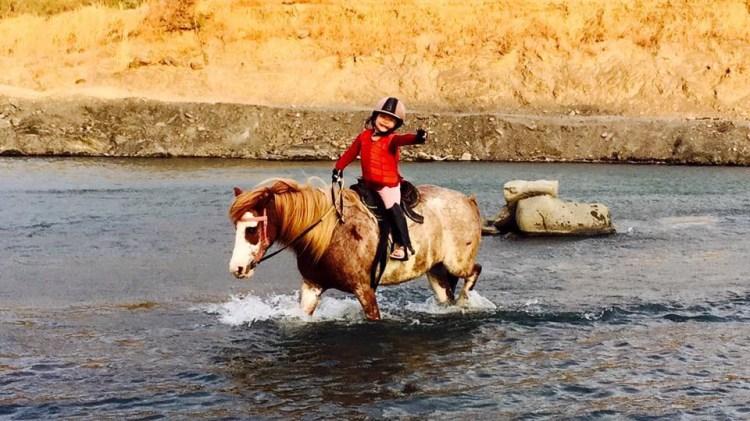 悠客論馬 五歲小朋友學騎馬的活動教材