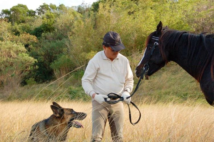 《悠客論馬》: 論買馬 當你愛上一匹馬,你會為牠傾家盪產。大寶