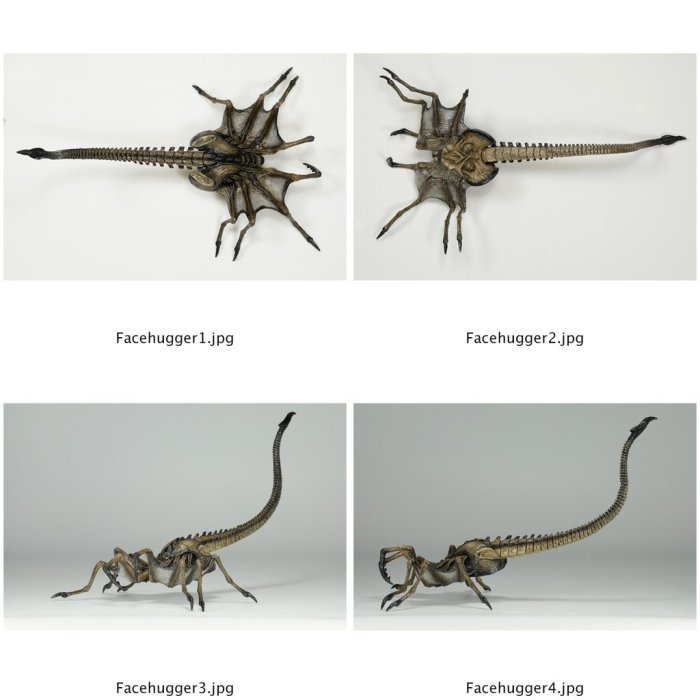 NECA-Royal-Facehugger-Preview