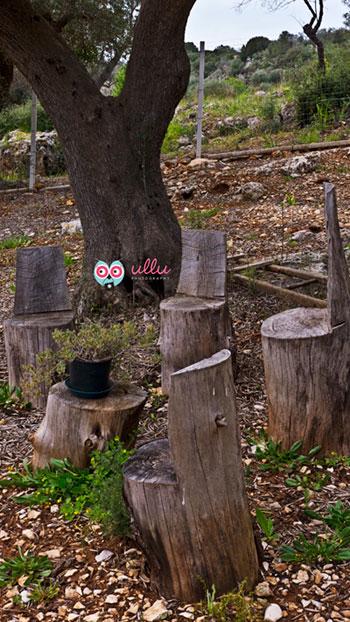 chat amongst olive oil trees, Villa Castelli, (Brindisi), Apulia, Italy