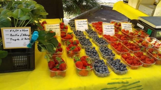 Mercato locale di piccoli frutti
