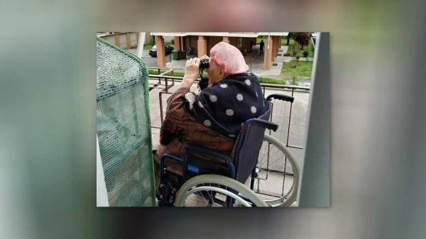 Em quarentena, idosa italiana controla o crescimento do seu jardim
