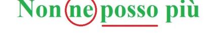 non_ne_posso_piu_immagine