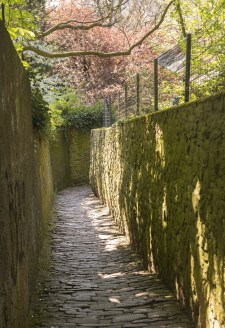 Path above old town of Heidelberg Germany