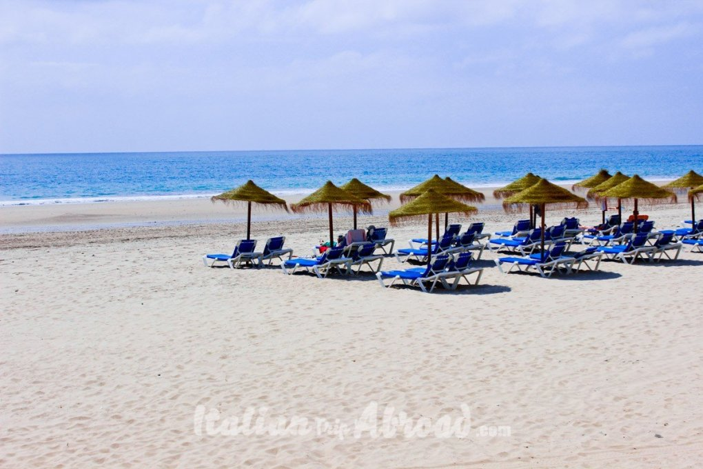Cadiz beach and palm three - How to travel with a full time job