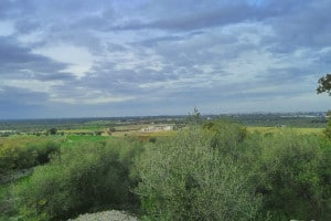 460388003-Puglian landscape