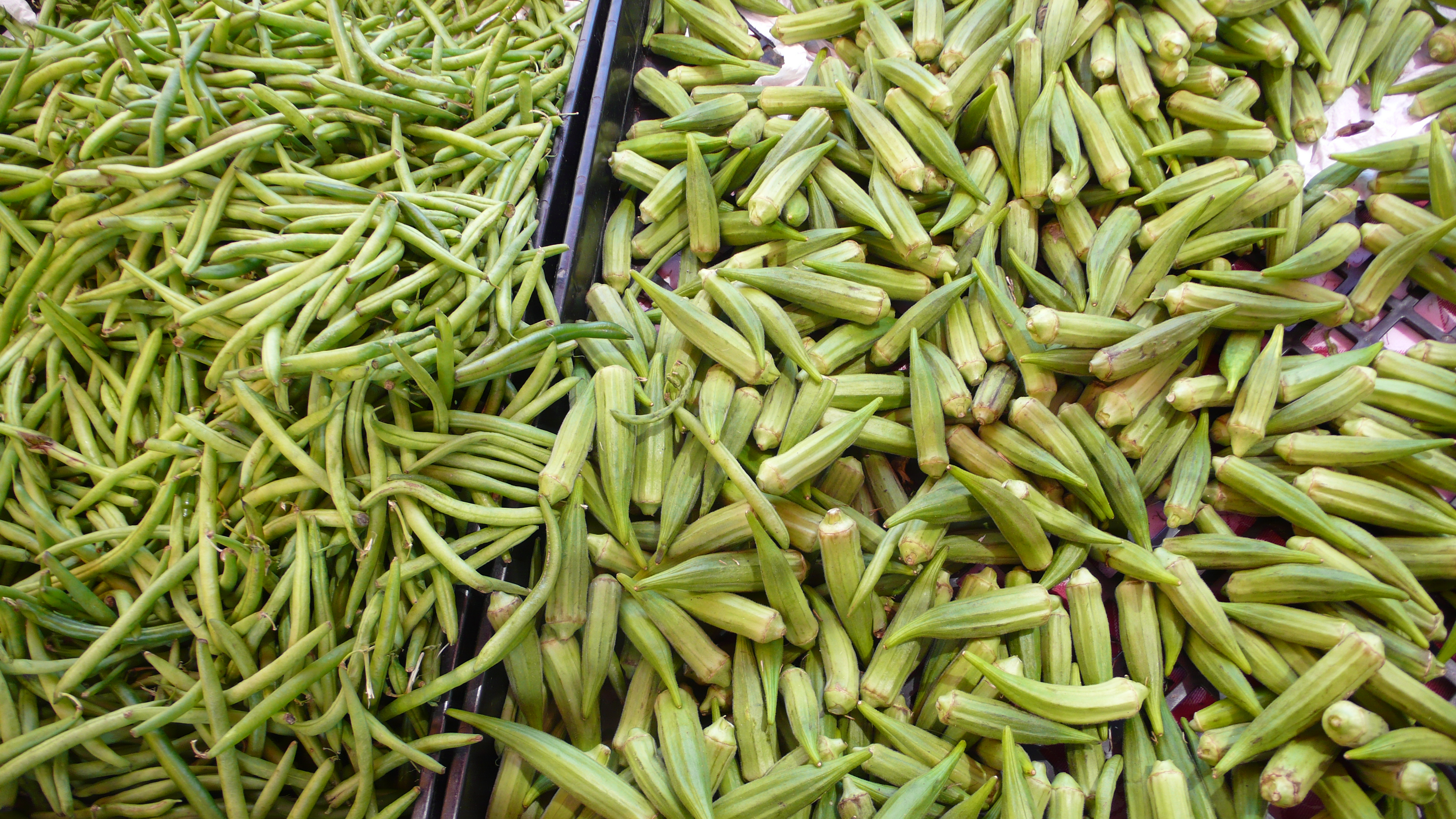 green beans and okra