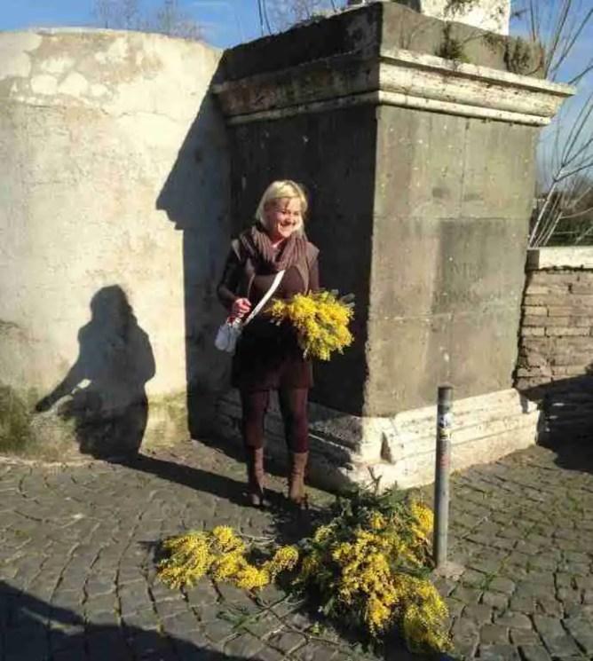 Mimosas for sale for International Women's Day (La Festa delle Donne)