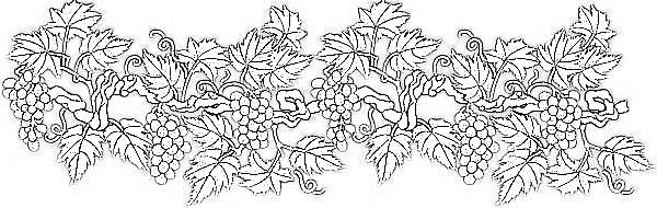 italophile coloring pages grape vine
