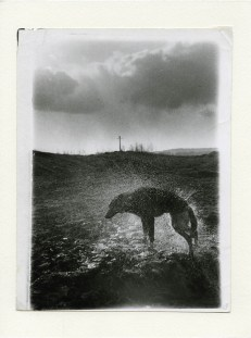 3.Black Archive, Boris Mikhailov, Courtesy Camera-centro Italiano per la Fotografia