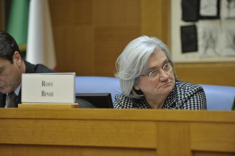 Rosy Bindi, Pres. Commissione Antimafia