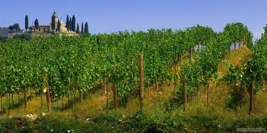 franciacorta-vineyards-gussago