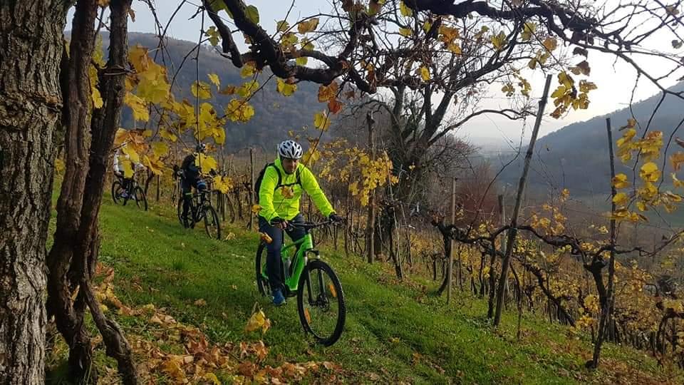 gita-in-bicicletta-colline-conegliano-contarini-italy4golf