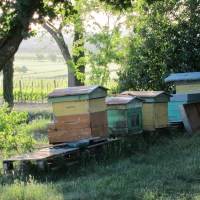 Style. Even Italian beehives have it.