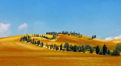 Colline Senesi Italyforall 2