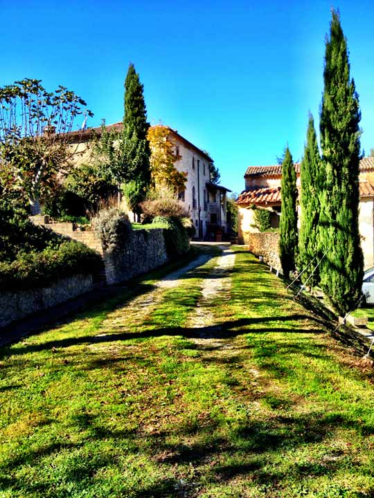 A sunny November Sunday afternoon, and a verdant drive leading to a magnificent estate.