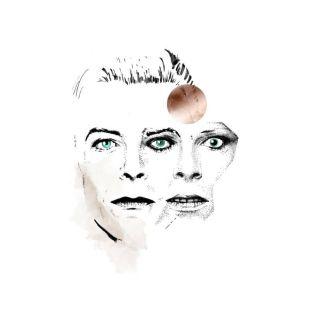 création de l'artiste et graphiste Julia Vereenoghe