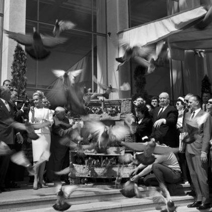 Le lâcher d'oiseau pour la sortie du film d'Hitchcock « Les oiseaux ». © Ina – Jean-Claude Pierdet