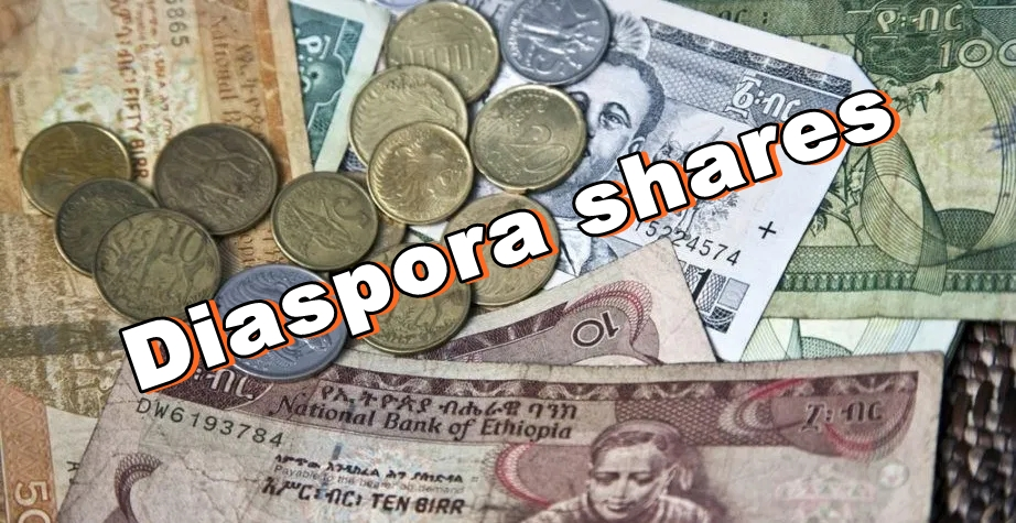 Ethiopian birr NBE diaspora shares