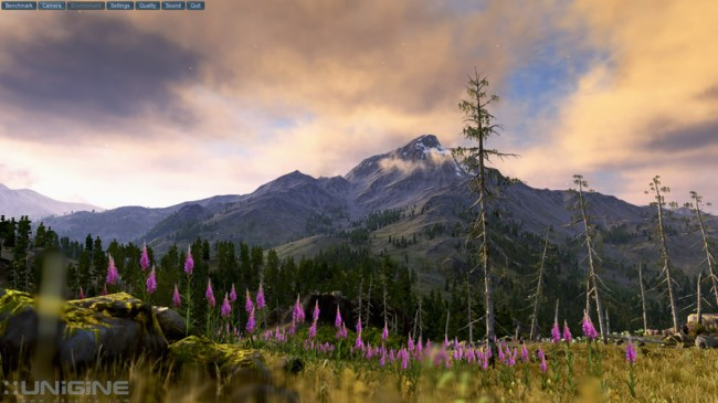 Valley_Benchmark_intro
