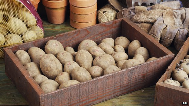 _78577610_c0199890-box_of_potatoes-spl