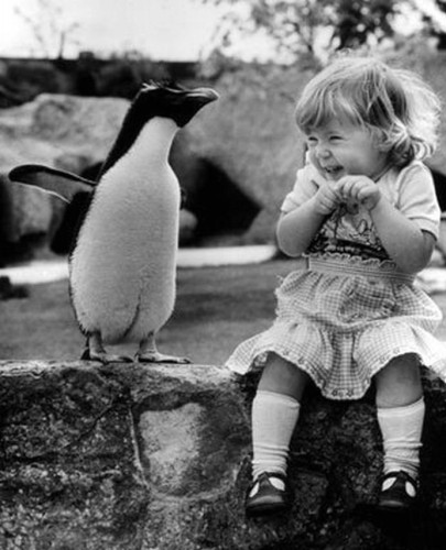 penguin-and-girl