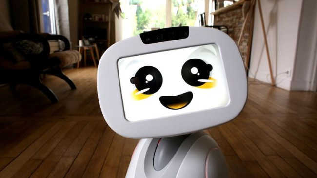 buddy-family-companion-robot-2