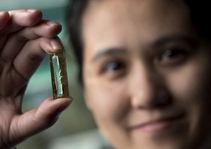 Аспирантка американского университета случайно создала «вечный» аккумулятор