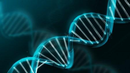 Французские ученые запустили бесплатные онлайн-курсы, посвященные генной инженерии