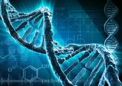 Мужчине пересадили перепрограммированные стволовые клетки донора