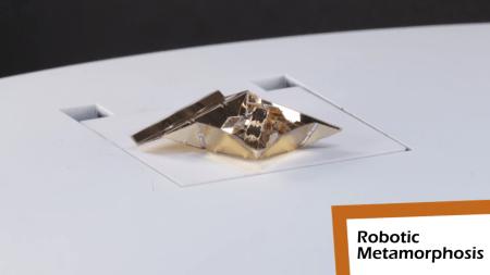 Инженеры Массачусетского технологического института разработали Primer — крошечного робота-оригами