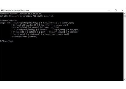 Microsoft добавила нативный клиент OpenSSH в Windows 10