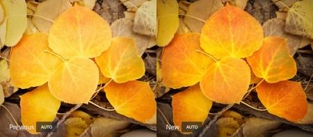 В Adobe Lightroom и Camera Raw добавлен автоматический режим улучшения снимков на базе ИИ
