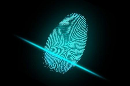 Japan Display Inc (JDI) разработала прозрачный сканер отпечатков, основанный на емкостной технологии