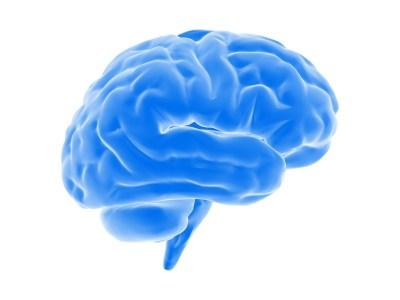 Стартап Nectome, созданный исследователями MIT, разрабатывает технологию переноса человеческого разума в облако. Для этого потребуется «заморозить» мозг при жизни