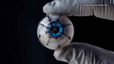 Ученые сделали еще один шаг на пути к созданию искусственных человеческих глаз