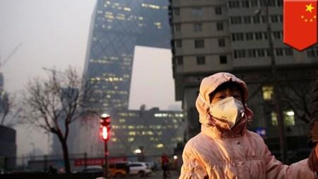 Ученые: загрязнение воздуха вредит не только физическому, но и умственному здоровью человека
