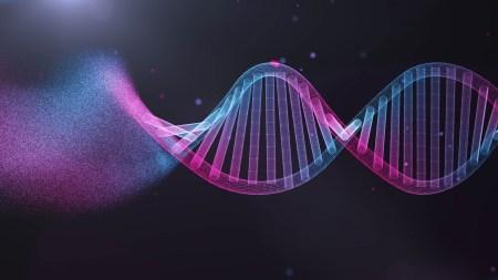 Китайские ученые призвали чиновников расследовать обстоятельства рождения детей с отредактированным геномом
